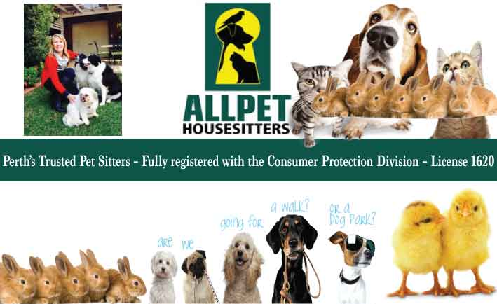 All Pet House Sitters